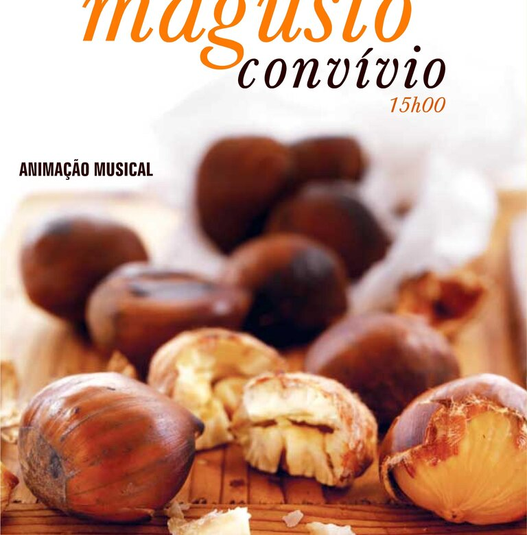 Magusto 1 768 780